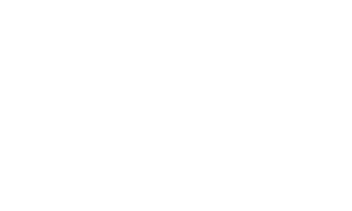DRZ logo